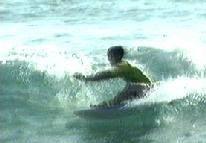 WaveMaster - NSW